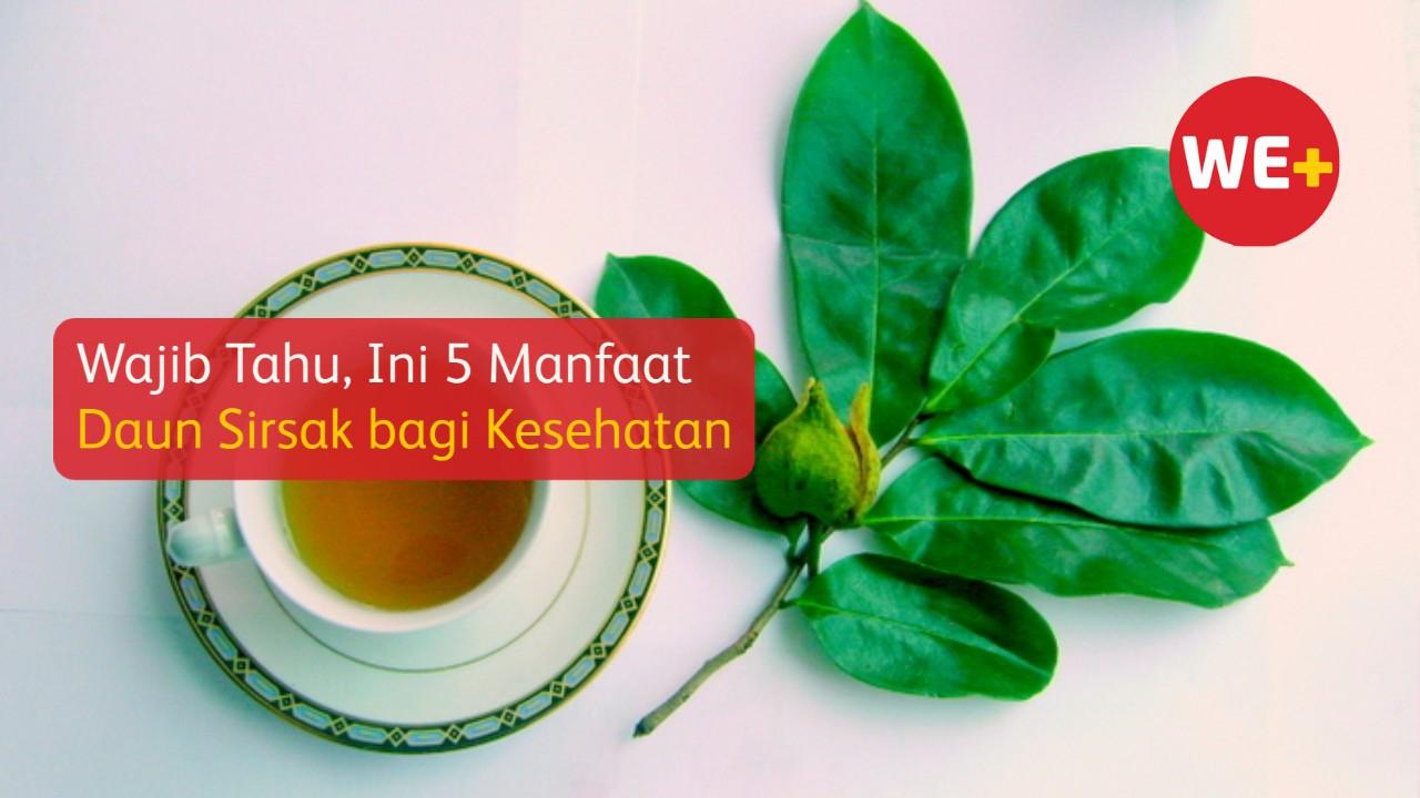 Wajib Tahu, Ini 5 Manfaat Daun Sirsak bagi Kesehatan