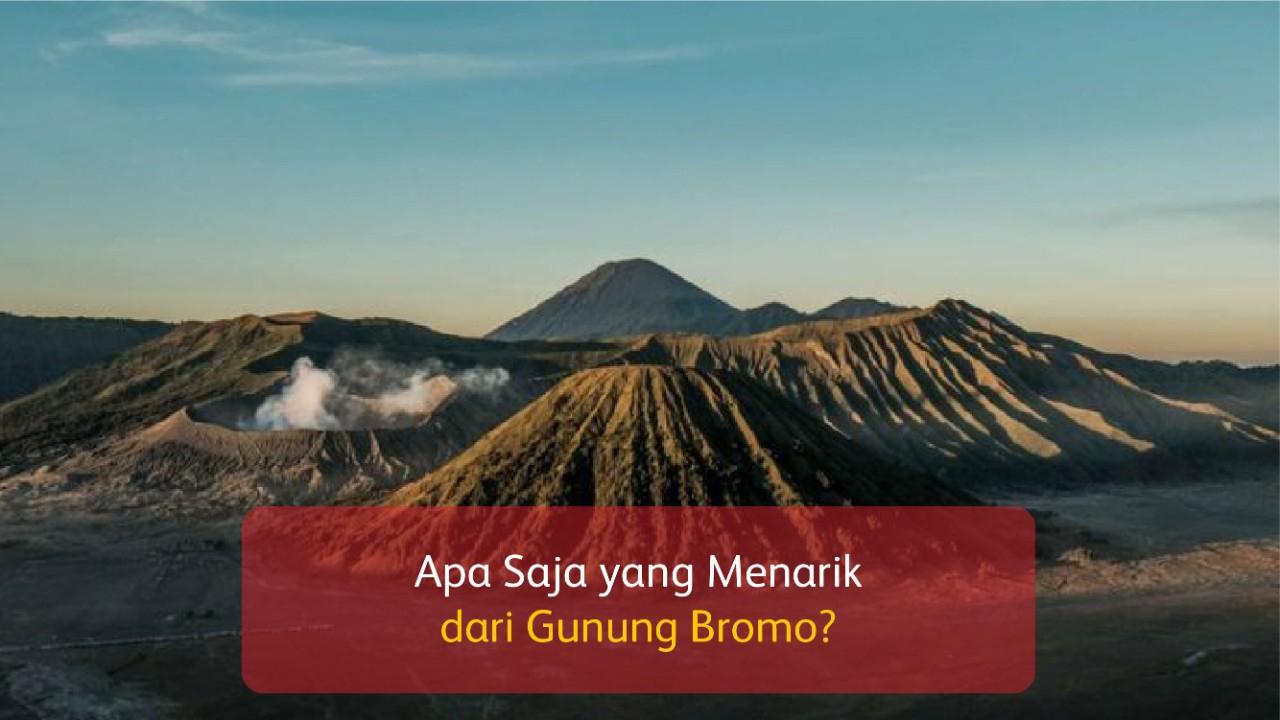 Apa Saja yang Menarik dari Gunung Bromo?